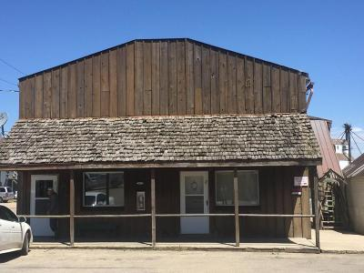 Clear Lake Commercial For Sale: 207 4th Street W