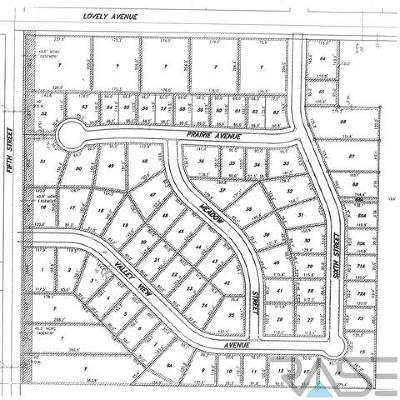 Baltic Residential Lots & Land For Sale: 531 Prairie Ave