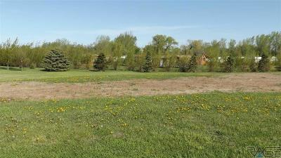 Residential Lots & Land For Sale: Silver Creek Dr