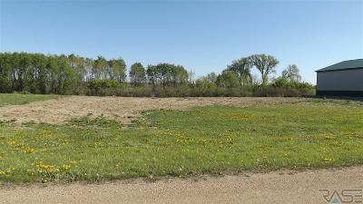 Residential Lots & Land For Sale: 462nd Lot 6,7 Ave