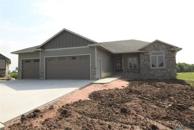 Sioux Falls SD Single Family Home Active-New: $399,500