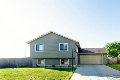 Brandon Single Family Home For Sale: 101 W Birchwood Dr
