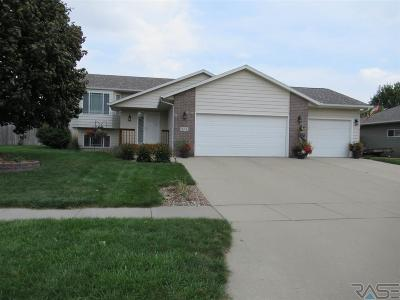 Brandon Single Family Home For Sale: 204 W Ironwood St