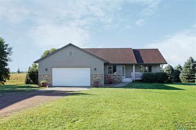 Brandon Single Family Home For Sale: 48297 Creekview Cir