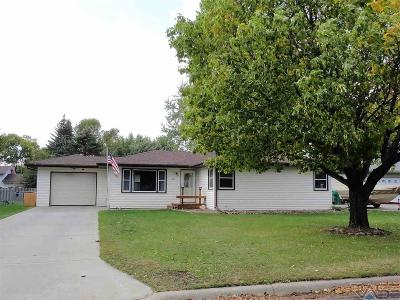 Brandon Single Family Home For Sale: 401 S 8th Ave