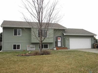 Sioux Falls, Harrisburg, Brandon, Tea, Worthington, Lennox, Canton, Hartford, Crooks, Renner, Humboldt Single Family Home For Sale: 500 S Susan Ave