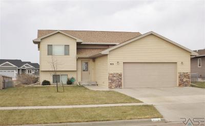 Sioux Falls, Harrisburg, Brandon, Tea, Worthington, Lennox, Canton, Hartford, Crooks, Renner, Humboldt Single Family Home For Sale: 955 N James Ave