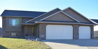 Brandon Single Family Home For Sale: 2605 E Augusta St
