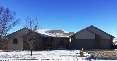 Brandon Single Family Home For Sale: 209 E Meadowlark Ct
