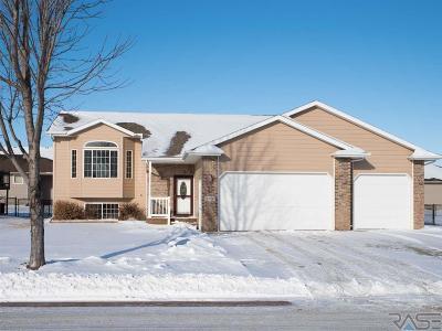 Brandon Single Family Home For Sale: 2913 E Sunrise Ct