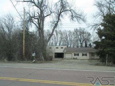 Brandon Single Family Home For Sale: 48276 Sd Hwy 42