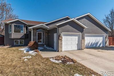 Brandon Single Family Home Active - Contingent Misc: 1216 S Parkview Blvd