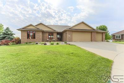 Brandon Single Family Home For Sale: 2204 E Byrum Cir