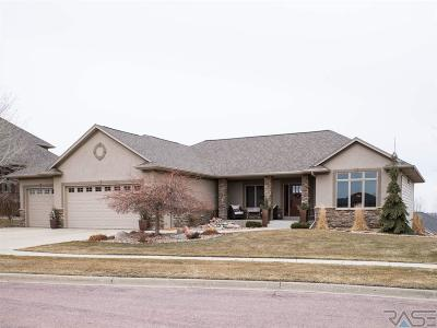 Brandon Single Family Home For Sale: 1904 W Tyler Cir