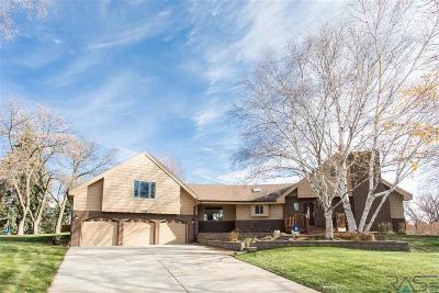 Brandon Single Family Home For Sale: 108 S Oak Ridge Rd