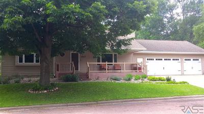 Brandon Single Family Home For Sale: 1617 Rushmore Dr