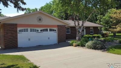 Brandon Single Family Home Active - Contingent Misc: 2408 S Splitrock Blvd