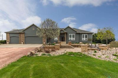 Brandon Single Family Home For Sale: 26756 483rd Ave