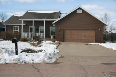 Beresford Single Family Home For Sale: 1190 Dignity Dr
