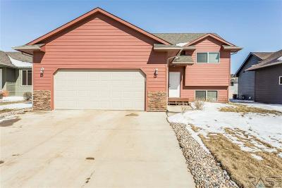 Sioux Falls, Harrisburg, Brandon, Tea, Worthington, Lennox, Canton, Hartford, Crooks, Renner, Humboldt Single Family Home For Sale: 434 Macey Ave