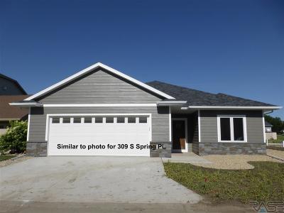Sioux Falls, Harrisburg, Brandon, Tea, Worthington, Lennox, Canton, Hartford, Crooks, Renner, Humboldt Single Family Home For Sale: 309 S Spring Pl