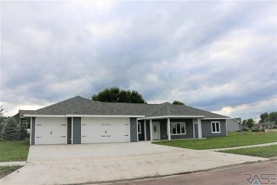 Canton Single Family Home For Sale: 1508 Holiday Dr