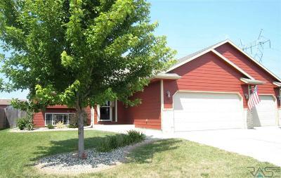 Sioux Falls, Harrisburg, Brandon, Tea, Worthington, Lennox, Canton, Hartford, Crooks, Renner, Humboldt Single Family Home For Sale: 702 Kent St