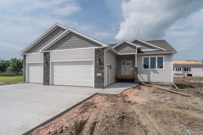 Sioux Falls, Harrisburg, Brandon, Tea, Worthington, Lennox, Canton, Hartford, Crooks, Renner, Humboldt Single Family Home For Sale: 123 Liberty Cir
