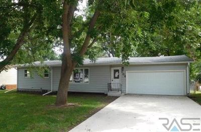Brandon Single Family Home For Sale: 108 S Needles Dr