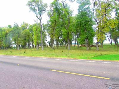Garretson Residential Lots & Land For Sale: 482nd Ave