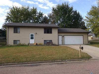 Brandon Single Family Home Active - Contingent Misc: 1501 E Rushmore Dr