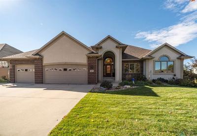 Brandon Single Family Home For Sale: 1601 S Parkview Blvd