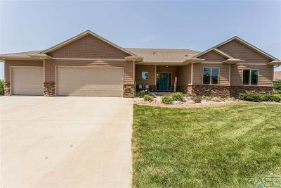 Sioux Falls Single Family Home For Sale: 2029 S Abbeystone Ct
