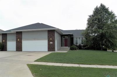 Sioux Falls Single Family Home For Sale: 2401 S Villanova Ave