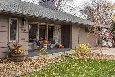 Sioux Falls Single Family Home For Sale: 909 S Willow Ave