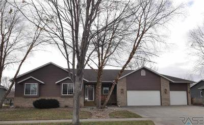 Brandon Single Family Home For Sale: 409 S Switch Grass Trl