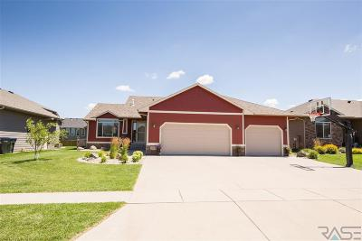 Sioux Falls Single Family Home For Sale: 1204 S Thecla Ave