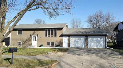 Sioux Falls Single Family Home For Sale: 3800 S Crescent Dr
