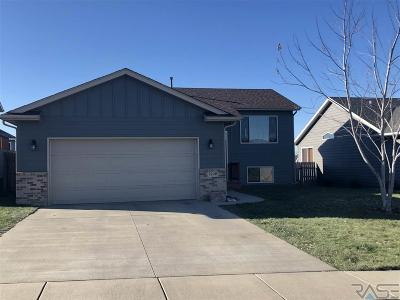 Sioux Falls Single Family Home For Sale: 5709 W Bream Dr