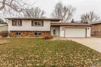 Sioux Falls Single Family Home For Sale: 4205 S Arden Ave