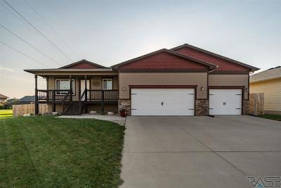 Sioux Falls SD Single Family Home Active-New: $232,000
