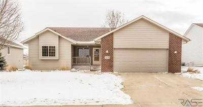 Sioux Falls SD Single Family Home Active-New: $249,900