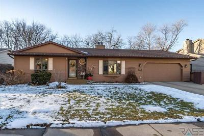 Sioux Falls SD Single Family Home For Sale: $300,000