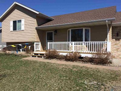 Brandon Single Family Home For Sale: 808 E Pine St