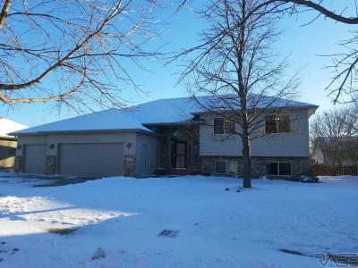 Harrisburg Single Family Home Active - Contingent Misc: 805 E Walnut St