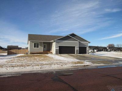 Harrisburg Single Family Home Active - Contingent Misc: 303 Emmett Trl