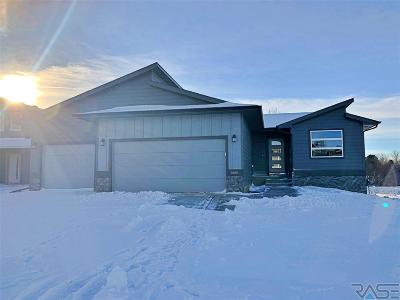 Sioux Falls Single Family Home For Sale: 6601 W Amber St