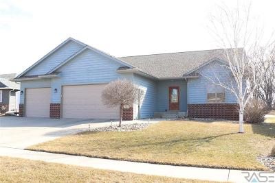 Sioux Falls Single Family Home For Sale: 1604 S Mary Beth Ave