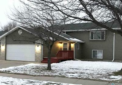 Sioux Falls Single Family Home For Sale: 602 N Solar Dr