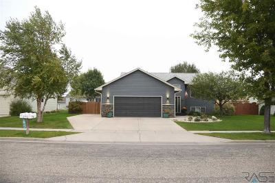 Sioux Falls SD Single Family Home Active-New: $262,000